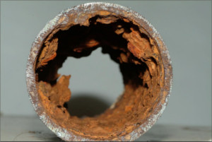 Sample of Large MIC Nodules in a Wet Fire Sprinkler System